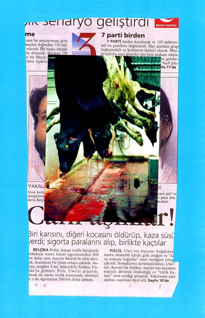 carole-miroche019